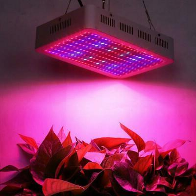 2000W LED Grow Full Spectrum Plant Veg Flower Medical Care