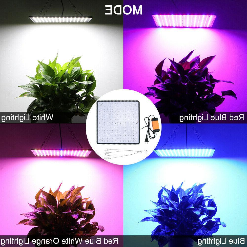 225 LED UV for Indoor Lamp US