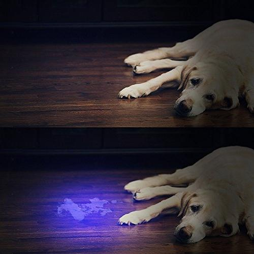 UV Flashlight light UV , 51 LED Ultraviolet Blacklight Pet Urine Dog/Cat Urine,Dry Stains,Bed Matching with Odor Eliminator