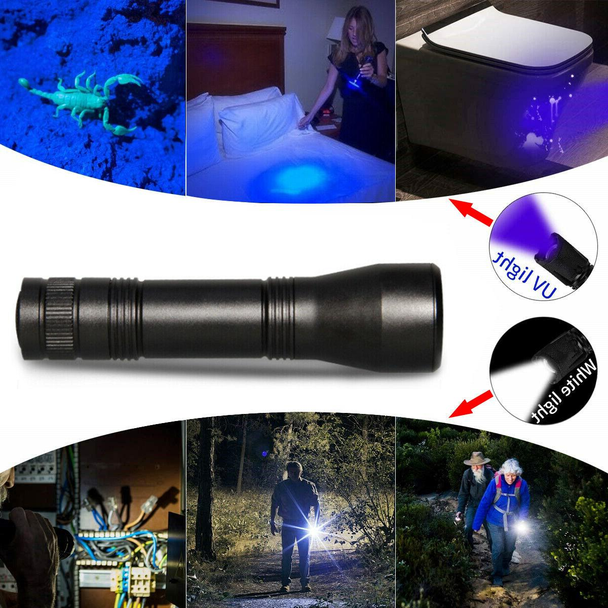 UV Zoomable 395nm Blacklight