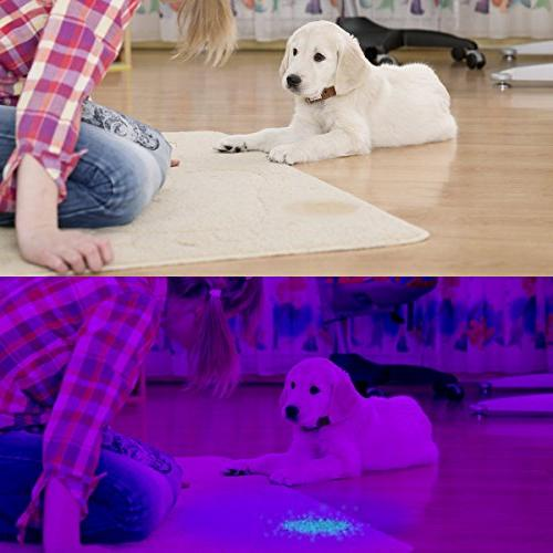 Blacklight 100 LED with Ultraviolet Marker Urine Finding Scorpions, Bed Bugs and Dog Cat Pee