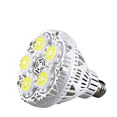 daylight plant light bulb