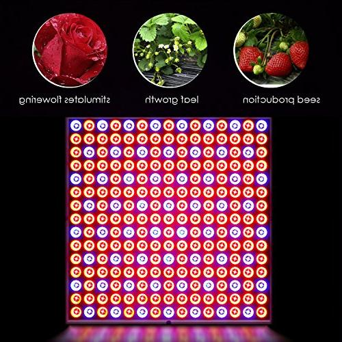 Deckey Grow Hanging Full Spectrum Plant Grow Lamp with UV IR Hydroponic Indoor Growth
