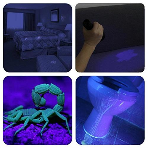 Black UV Light,Vansky LED For Dry Bed Bug with Pet Eliminator