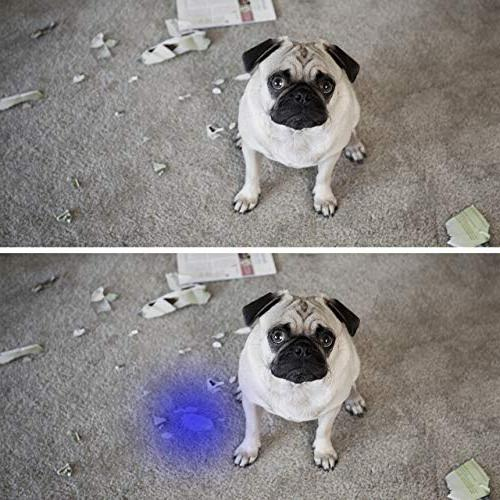 Black Light Flashlight UV LED Urine For Urine Dry and Bug Carpets/Rugs/Floor,Matching with Pet